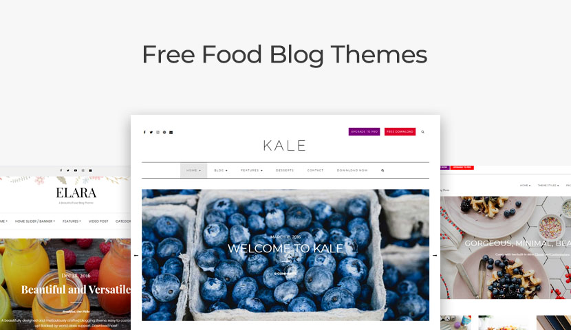 10 of the Best Free Food Blog Themes