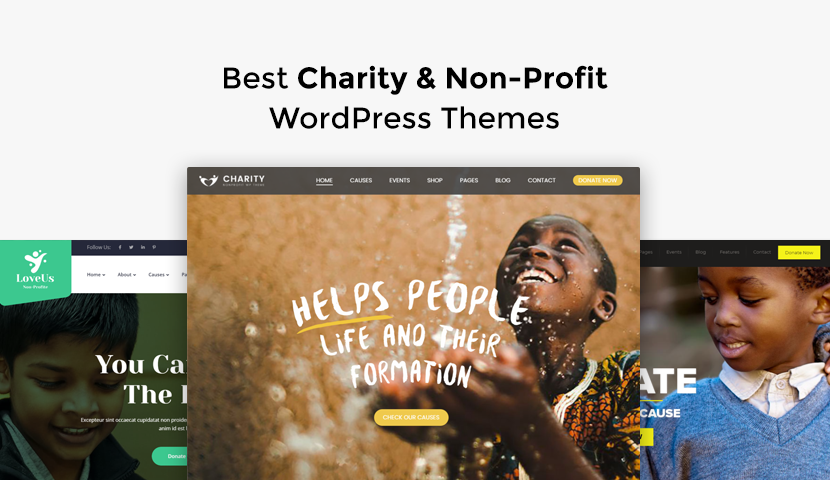 10 Best Charity & Non-Profit WordPress Themes