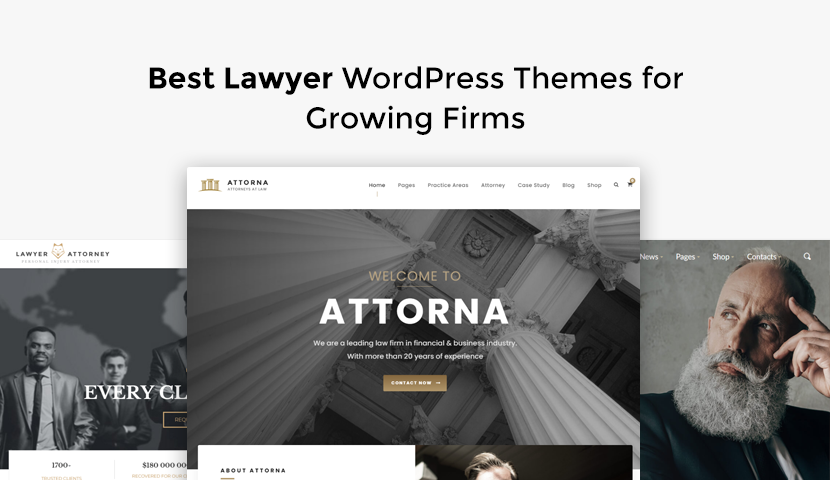 10 Best Lawyer WordPress Themes for Growing Firms