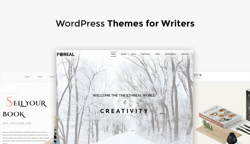 9 WordPress Themes for Writers and Authors