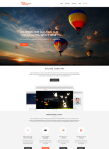 vega-pro-wordpress-theme