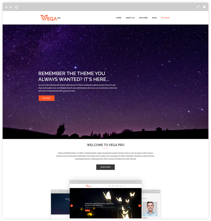 Vega Pro - One Page Multipurpose WordPress Theme - LyraThemes