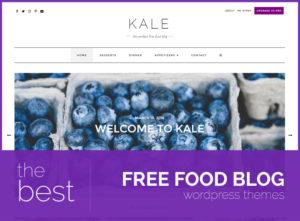 best free food blog themes
