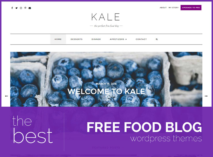 The Best Free Food Blog Themes For Sharing Recipes and Food Photos