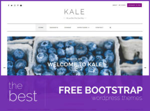 best free bootstrap wordpress themes