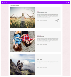 juliet feminine blog theme