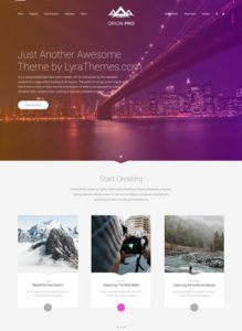 Orion Pro - Beautiful multipurpose theme for wordpress