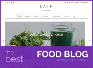 best food blog wordpress themes