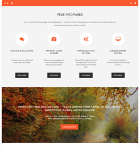 vega free wordpress theme cta