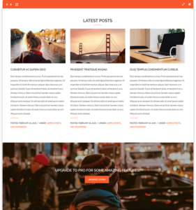 vega free wordpress theme content area