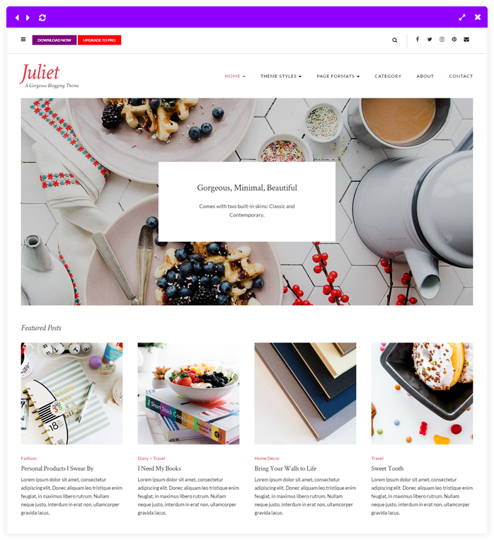 Juliet A Gorgeous Free Feminine Wordpress Theme
