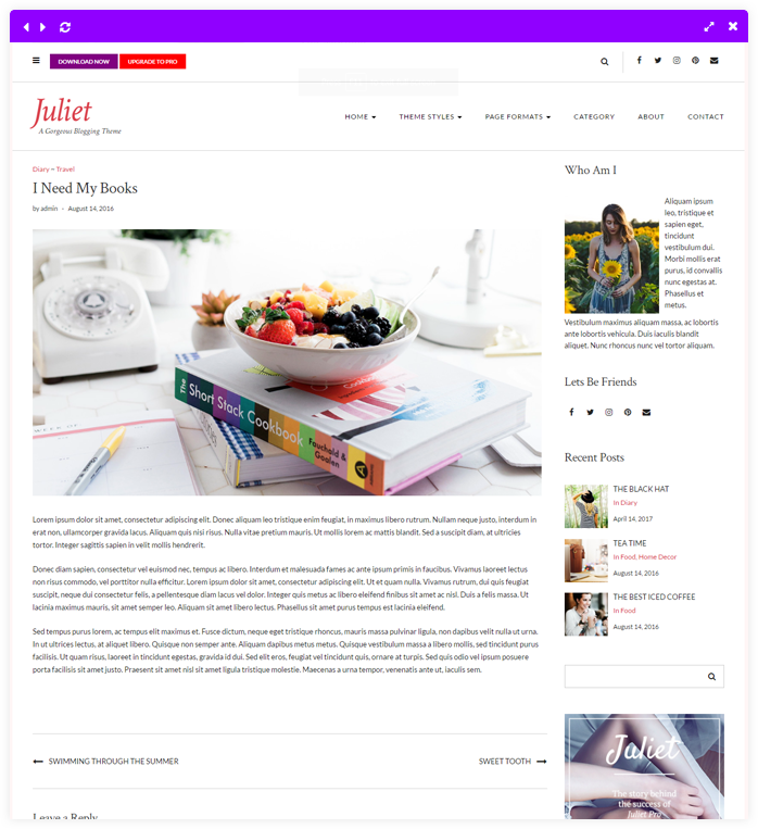 Juliet - A Gorgeous Free Feminine WordPress Theme