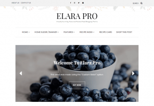 Elara Pro