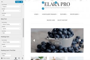 Elara Pro - Custom Fonts