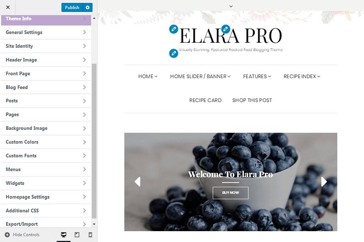 Elara Pro - Customizer