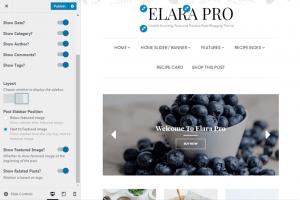 Elara Pro - Post Settings