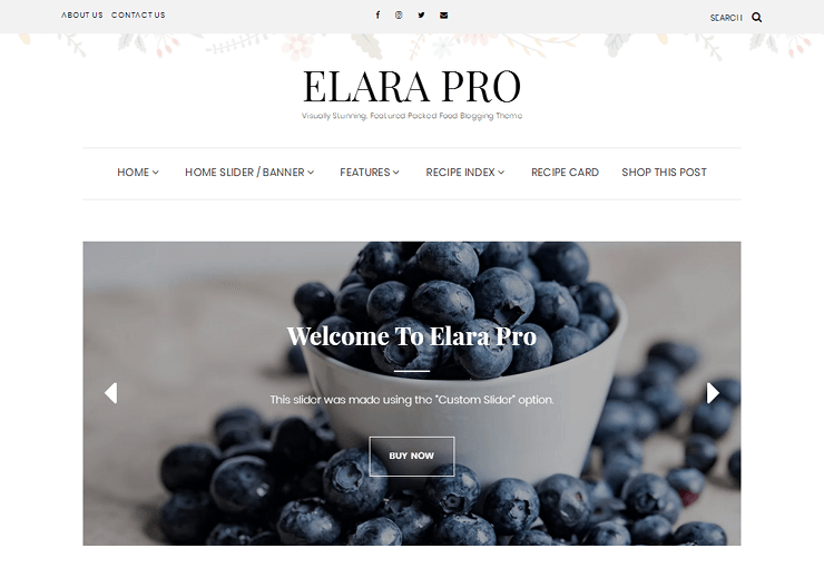 Elara pro review how to set up your food blog theme main features forumfinder Images