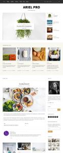 Ariel Pro WordPress Theme