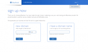 Bluehost - Domain