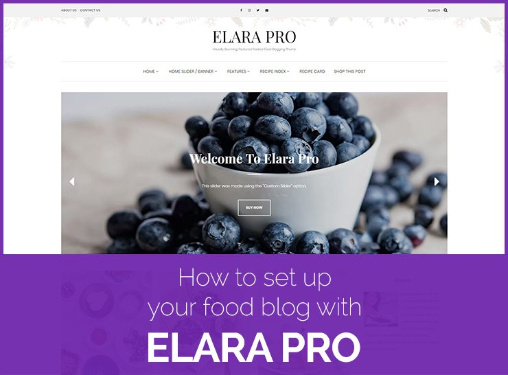 Elara Pro Review – How To Set Up Your Food Blog